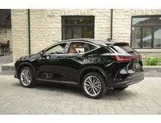 Lexus NX (2022 - Present)