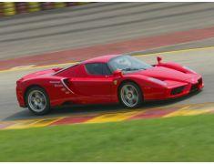 Enzo Ferrari (2002 - 2004)